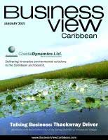 Business View Caribbean cover for the January 2015 issue. Showing lily pads on water and grass growing out of the water behind it.
