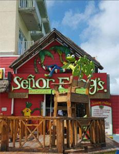 senor-frogs