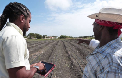 Barbados Agricultural Development Marketing Corporation. A man and woman stand on an empty field. The man using a device in his hand and the woman pointing.