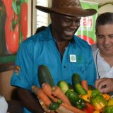 The Ministry of Industry Commerce Agriculture and Fisheries – Jamaica