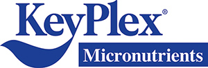 KeyPlex International Inc.