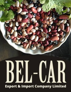 BEL-CAR EXPORT & IMPORT