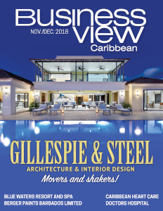 November 2018 issue cover of Business View Caribbean.