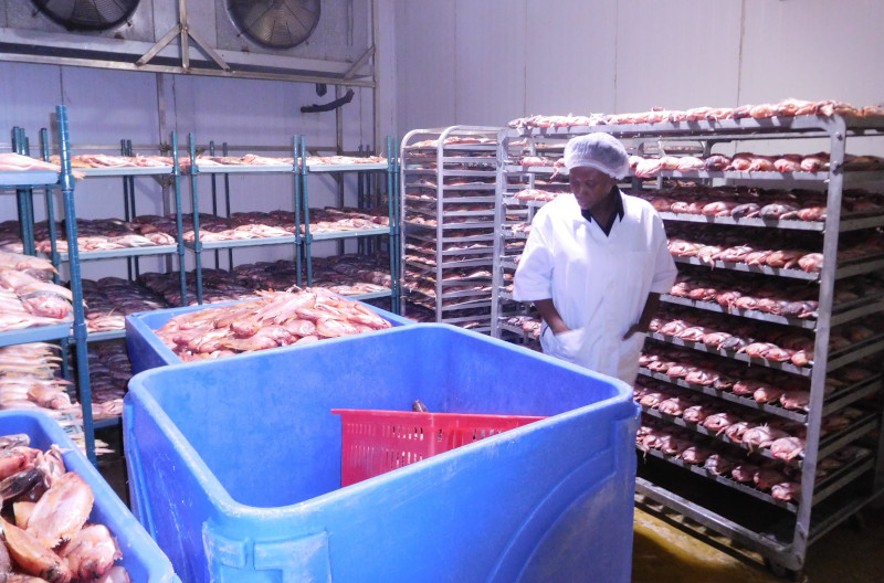 Algix Jamaica Ltd. blast freezer inspection by the plant manager.