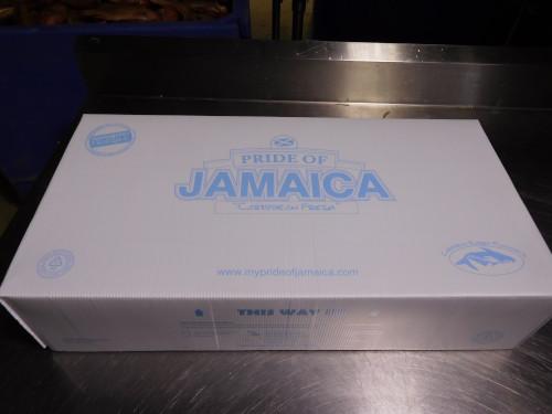 Algix Jamaica Ltd. packaging box.