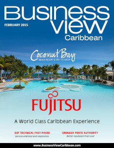 February 2015 Issue cover Business View Caribbean.