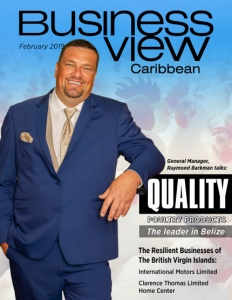 February 2019 issue cover of Business View Caribbean.