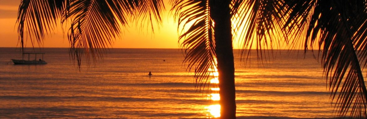The Ministry of Tourism Jamaica. Sunset on the beach with someone in the water and a palm tree in front.